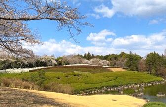 長久手情報コミュニティ_愛知県緑化センター 昭和の森_豊田市