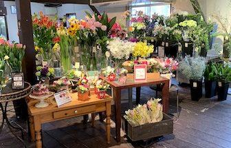 長久手の素敵な花屋さん「アイビーフラワーズ」